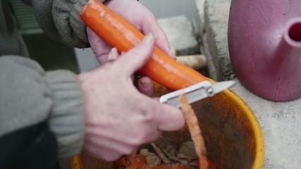 Female hands peeling carrot into bucket