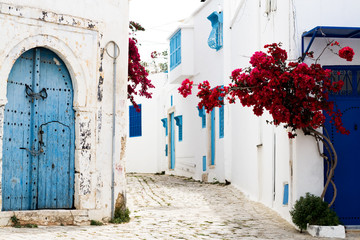 Blue doors, window and white wall of building in Sidi Bou Said © myrka