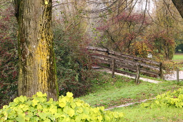 Giardini d'autunno