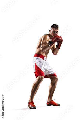 Papiers peints Individuel Professionl boxer is isolated on white