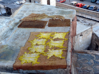 Yellow Dyed Hides Drying in Sun