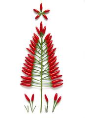 Christmas tree made of chili