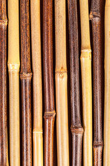 bamboo pipes texture