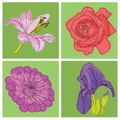 flowers rose pattern