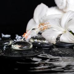 cryogenic spa concept of delicate white hibiscus, zen stones wit