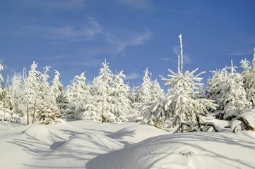 winterliche Traumlandchaft