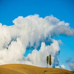 Tuscany with two cypress trees and clouds in the background