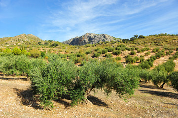 Paisaje de la Subbética, provincia de Córdoba, España