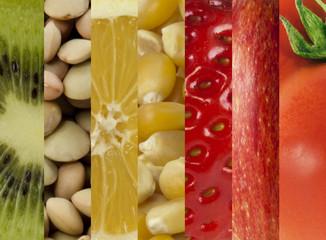 Collage di ingredienti