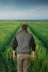 Man walking forward in green field