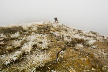 sisli dağlarda