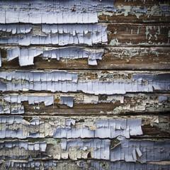 texture background - paint