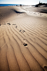 Sand dunes in Gran Canaria, Spain