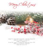 Fototapety Christmas branch