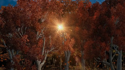 Autumn forest in the sunlight, components on green screen