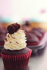 Black forest cupcake with blurred tray in background