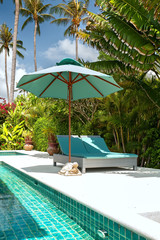 plank bed, pool, palm tree