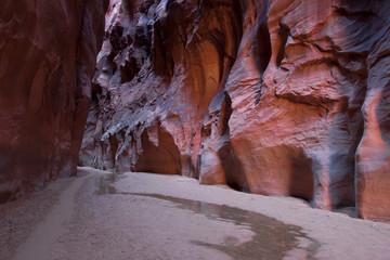 AZ-Paria Canyon-Vermillion Cliffs Wilderness-Buckskin Canyon