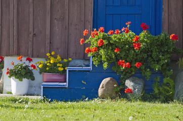 beautiful flowers near house door