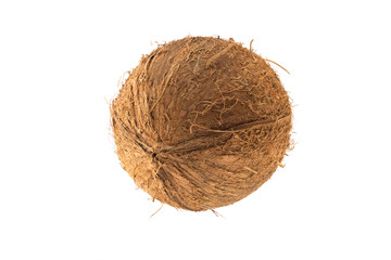 Round coconut fruit