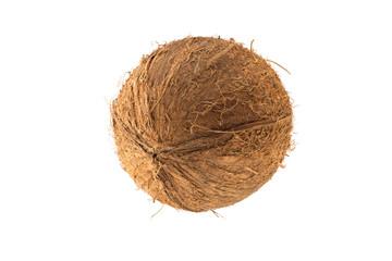 Round coconut fruit