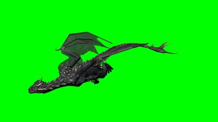 dragon swims - 2 different green screen variants