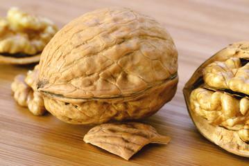 Walnut / Walnuss - Shell / Schale