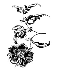 Drawing silhouette black flower