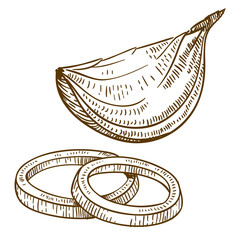 engraving antique vector illustration of slices of onion