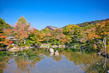 Japanese garden during Fall , Kyoto,  Japan.