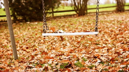 Empty swing  moving with leaves