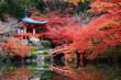 Red Japanese Pavilion  in the autumn