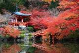 Fototapety Red Japanese Pavilion  in the autumn