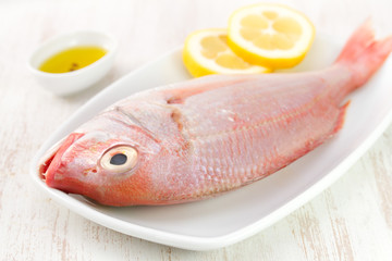 fresh fish with lemon on white dish