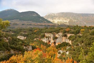 colores de otoño en el cañon del rio ebro
