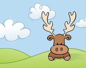 Moose in a Field