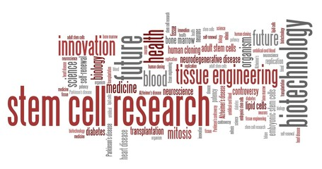 Stem cell research. Word cloud concepts.