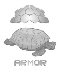 Armor turtle draw