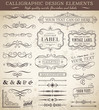 Vector Vintage Design Elements - 73789984