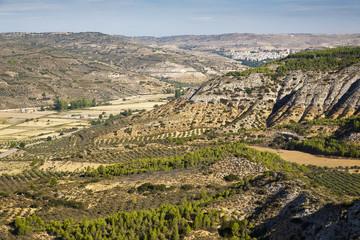 Camino en los Cerros del Rincón. Pastrana. Guadalajara