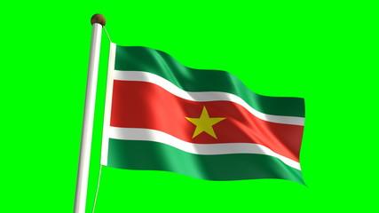 Surinamese flag (seamless & green screen)