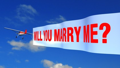 """airplane with banner """"will you marry me?"""""""
