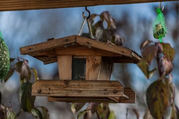 Vogelhaus - Vogelhäuschen im Herbst
