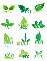 Eco friendly logo design elements set