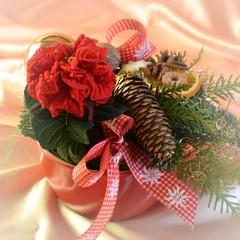 Gesteck mit Zapfen und Weihnachtsrose