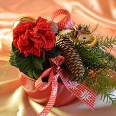 Weihnachtsgesteck mit Weihnachtsgewürzen und Weihnachtsrose