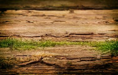 Leeres Holzbrett mit Moos