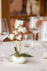 ready restaurant table and orchid plant