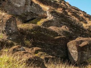 Half Carved Moai