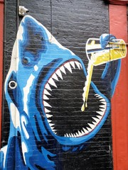 Shark Grafitti